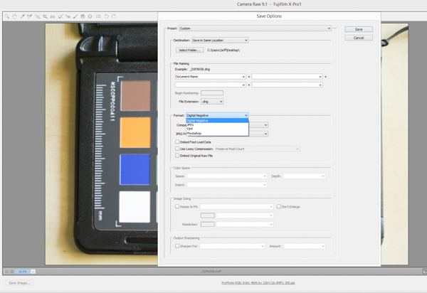 Converting a RAW image to a DNG in Adobe Camera RAW
