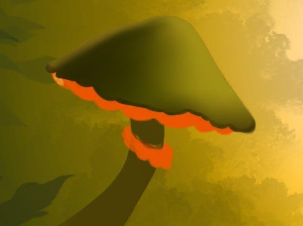 Mushroom cap shadow