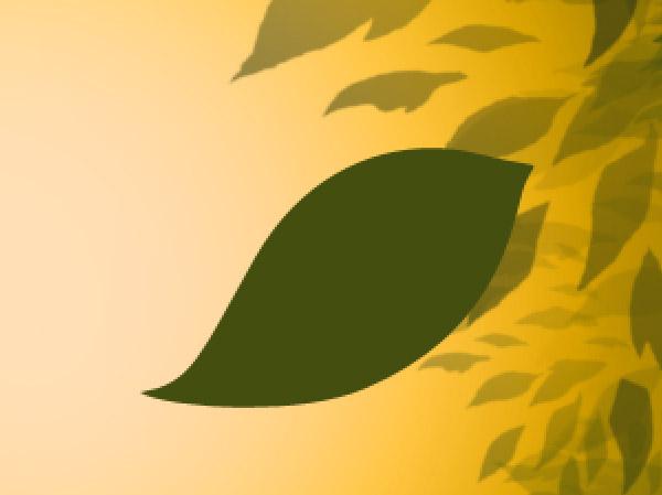 Base da folha