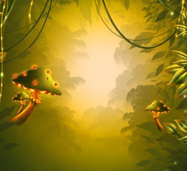 Cogumelos finais