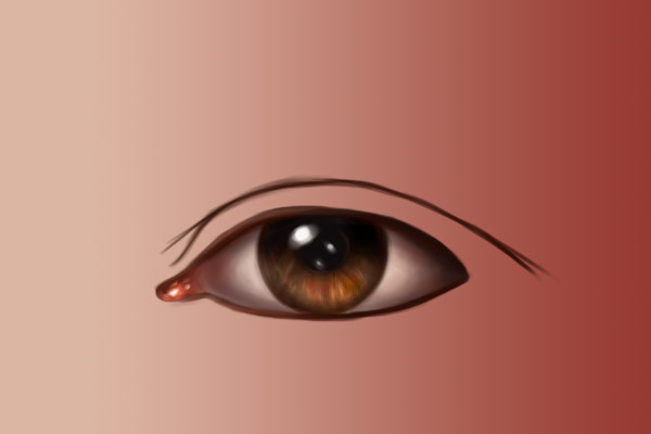 Eye crease
