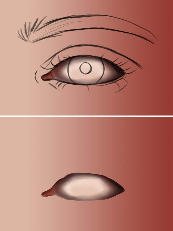 Lacrimal base
