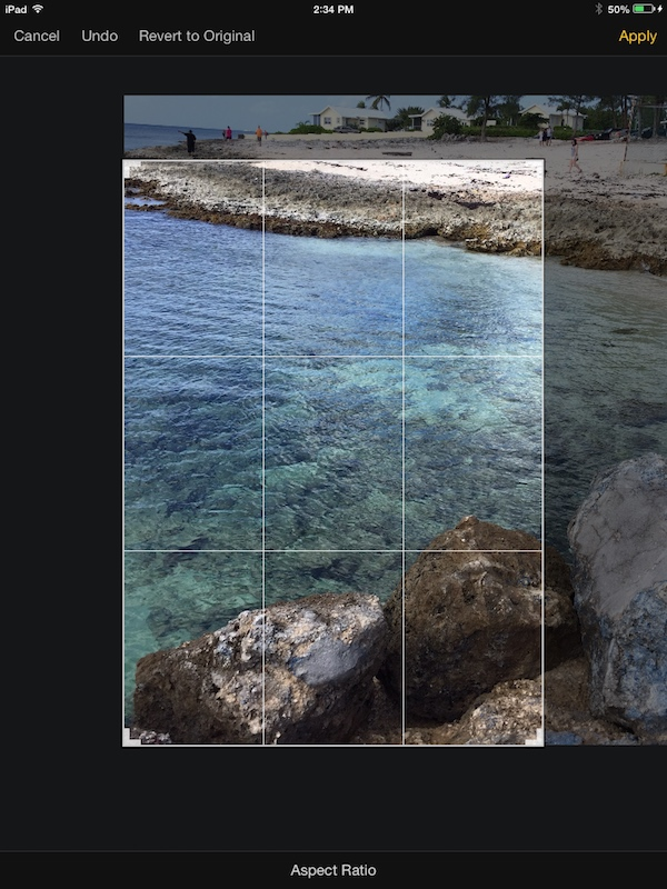 Using the crop tool in Pixelmator for iPad