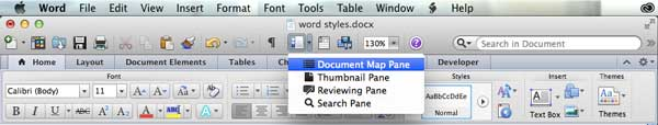 document map pane