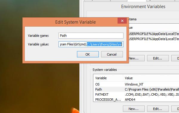 Edit System Variable diablog in Windows