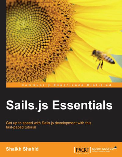 Preview for Sails.js Essentials