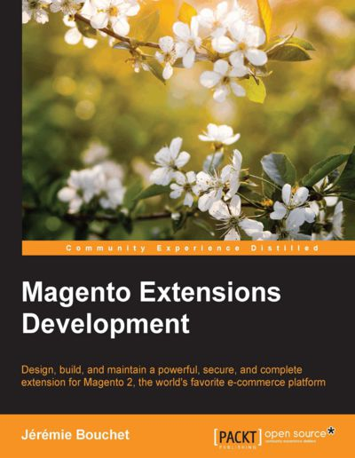 Preview for Magento Extensions Development