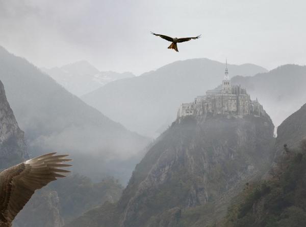 adding eagle 2