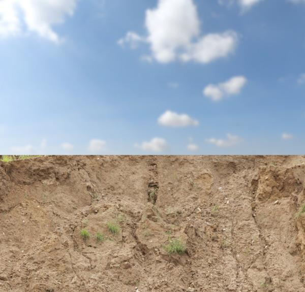 adding soil 1