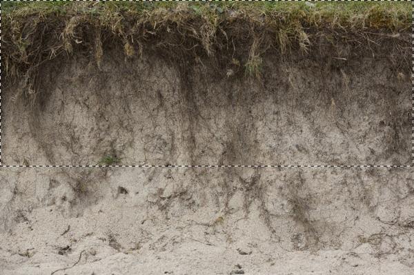 select soil 2