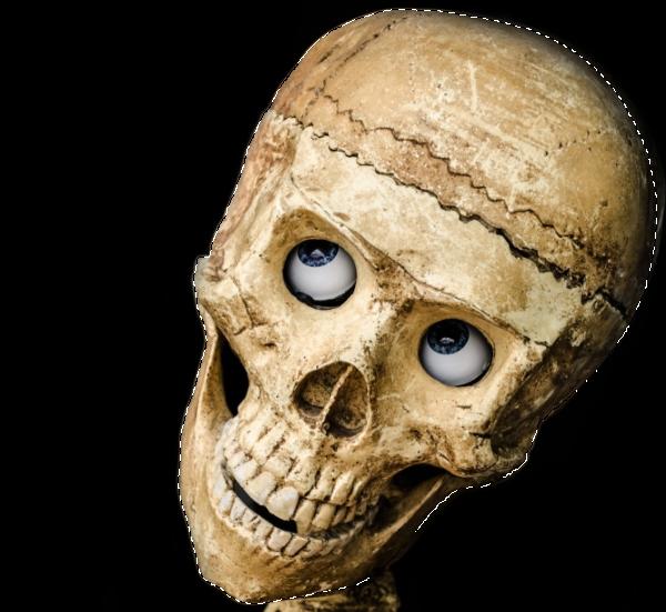 select skull