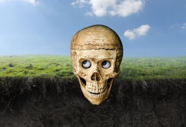 adding skull