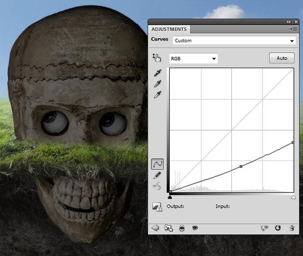 skull curves darken