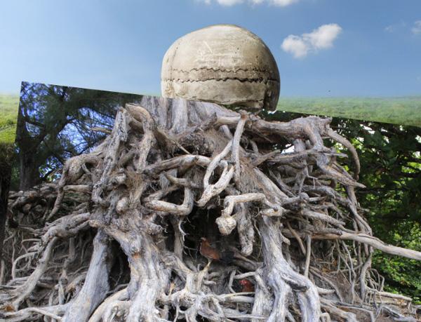 adding root full