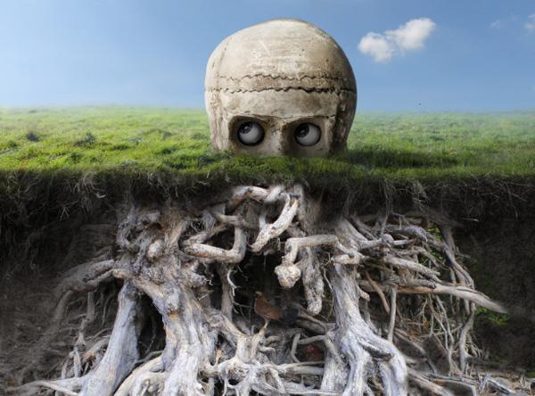 masking root full