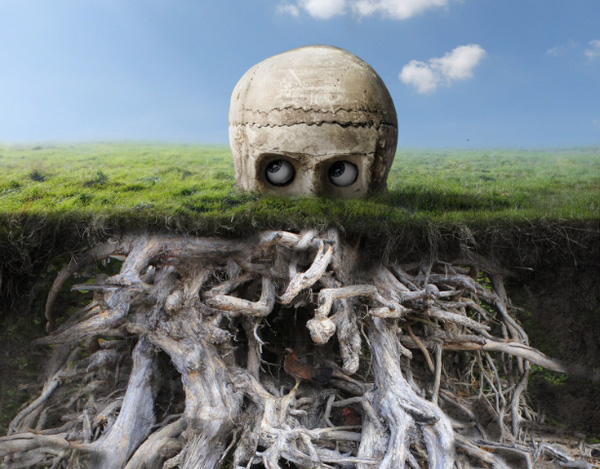 masking root part