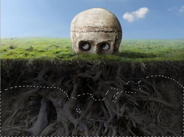 roots levels masking