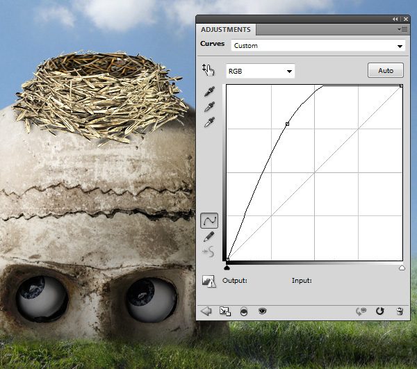 nest curves