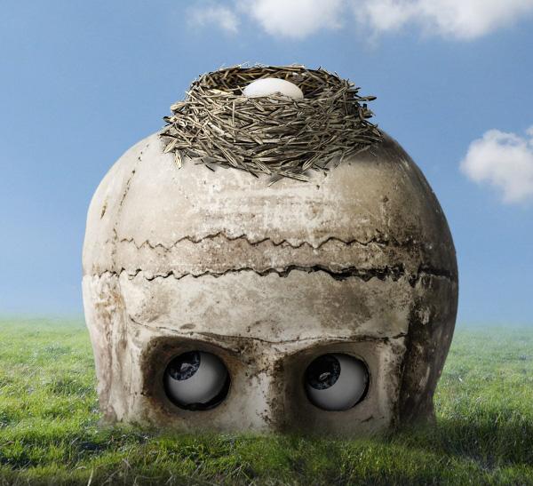 egg masking