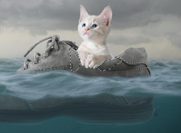 mascaramento gato