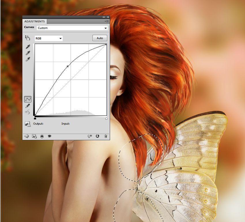 wings curves