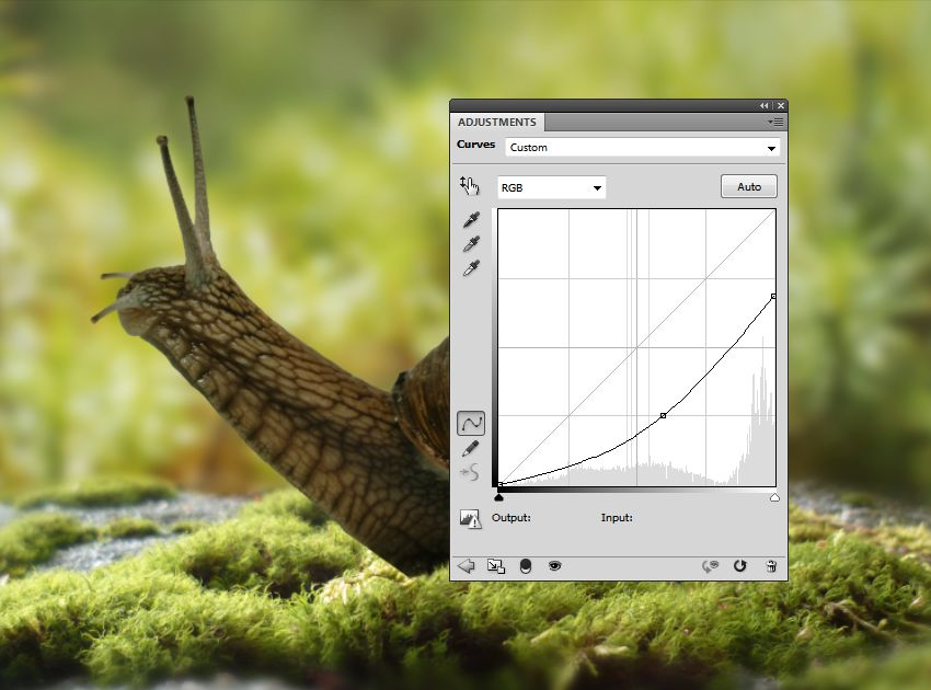 snail curves 1