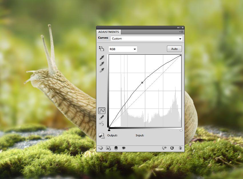 snail curves 2