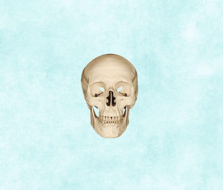 add skull
