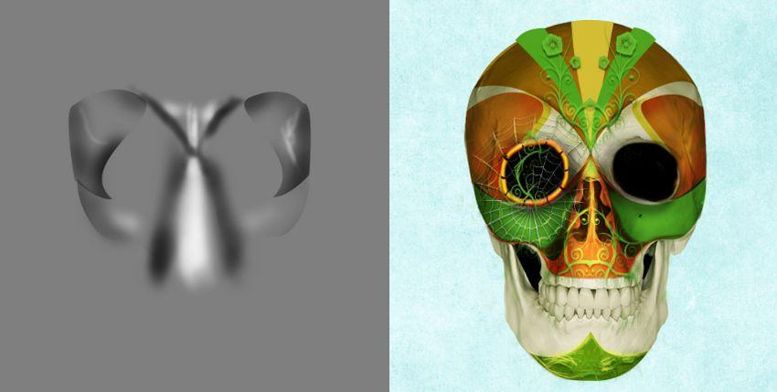 DB skull