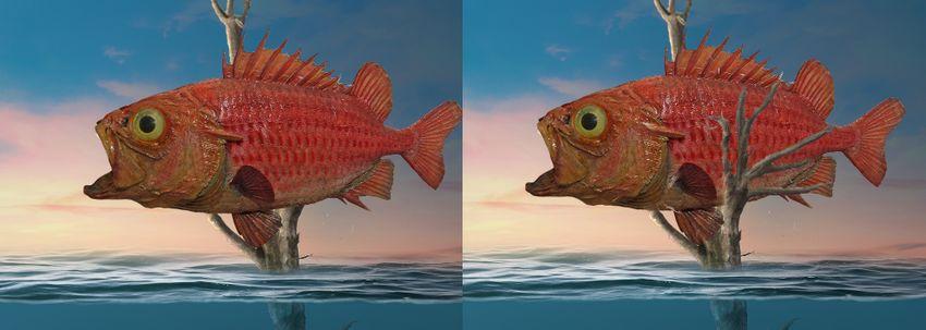 add fish