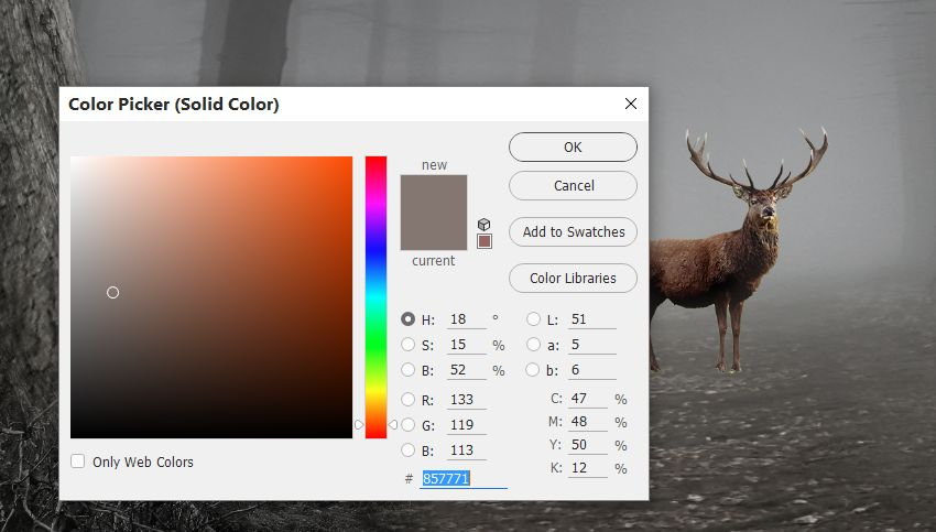 deer color fill
