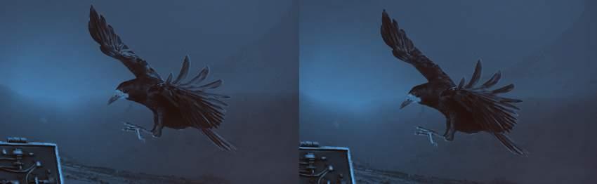crow bright details remove
