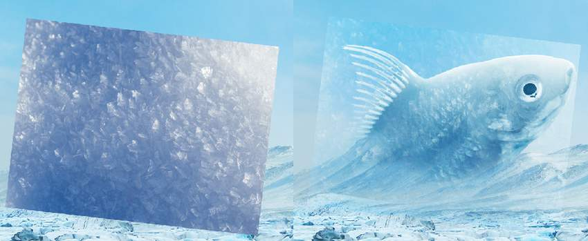 add ice texture 1