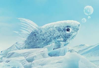 Icy fish thumbnail