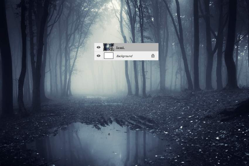 add forest