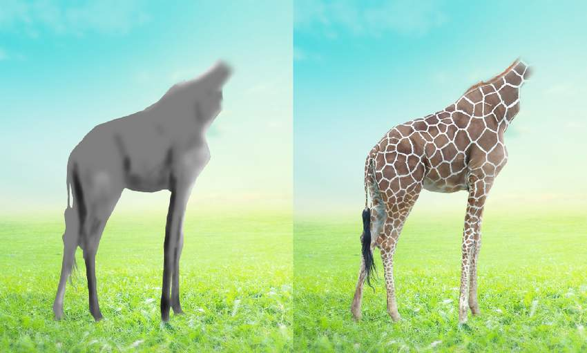 giraffe DB results