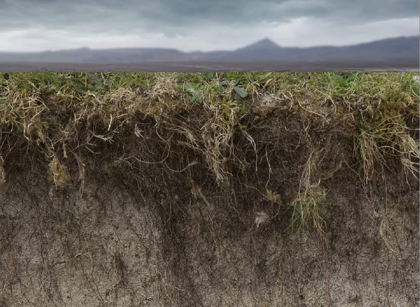 add soil 1