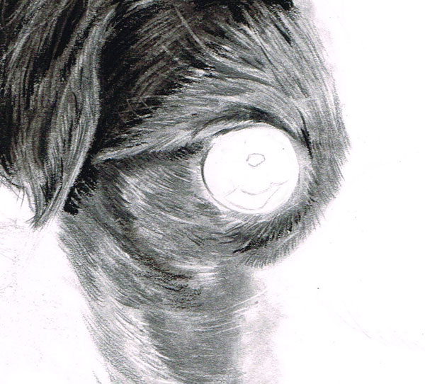 Draw in fine black hairs using a SHARP black coloured pencil