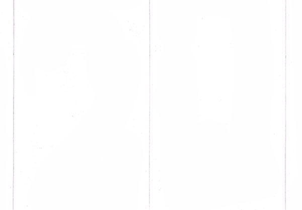 Begin your image by dividing your paper in half with a drawn line