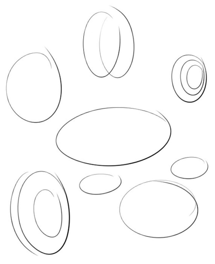 Практика рисования эллипсов и кругов важна