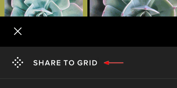 How to share an image to VSCO Grid