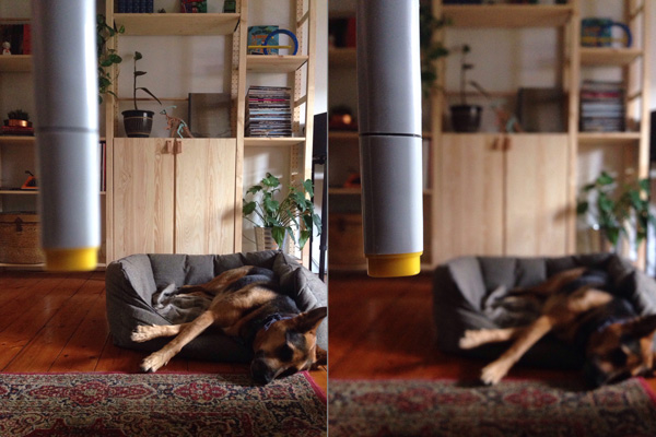 Two photos showing the range of depth of field possible using VSCO Cam on an iPhone