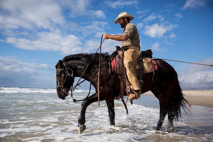 cowboy in the surf