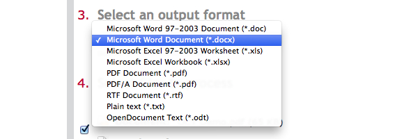 Select an output format from the drop-down menu