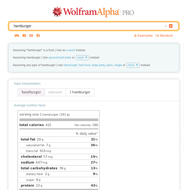 A WolframAlpha search for the nutritional value of a hamburger
