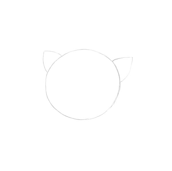 Flower - Round shape as borders
