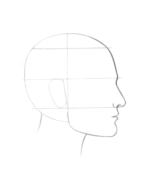 Drawing profile features