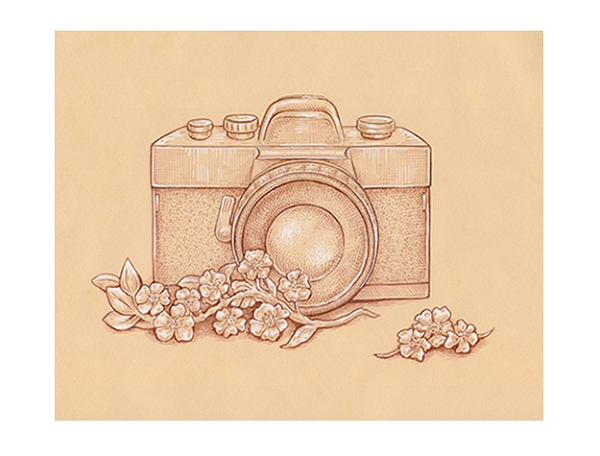 How To Draw A Vintage Camera With Sepia Ink Liners On