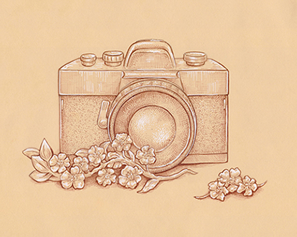 How to Draw a Vintage Camera With Sepia Ink Liners on Toned Paper