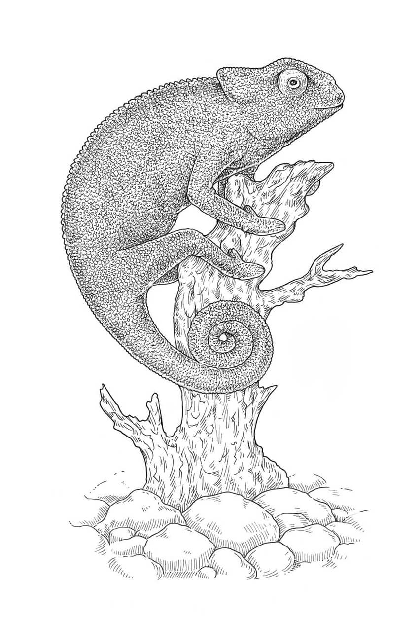 Adding the crosshatching to the texture of the lizard